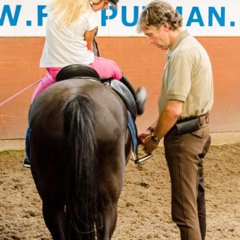 Beginnersles pony