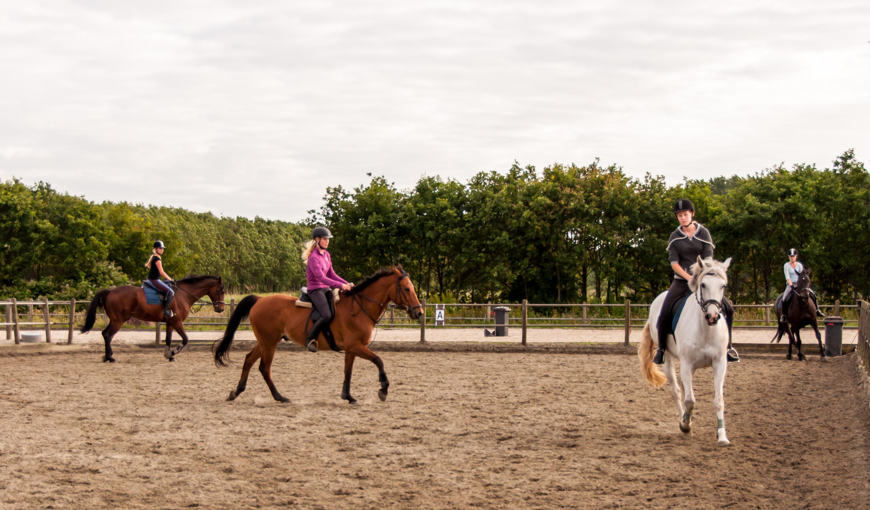 Paardenles jeugd