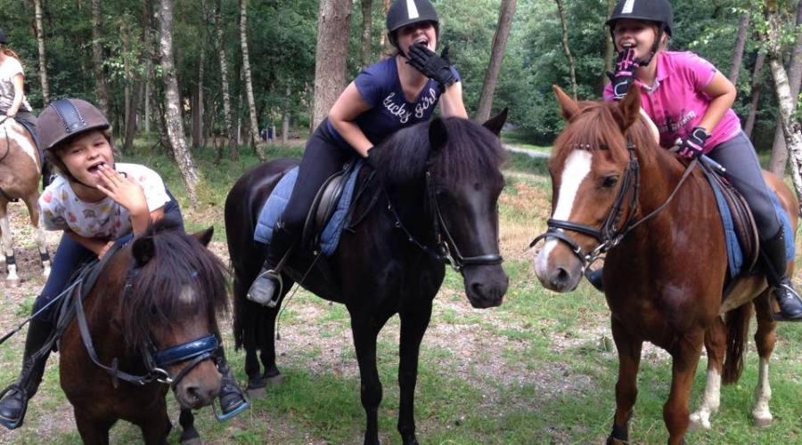 ponykamp in het bos op paard2